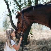 pony    Pony Horse for Lease in CA