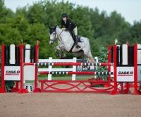 belgian-sporthorse    Warmblood Horse for Lease in Ontario